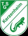 tsg-kerzenheim.de
